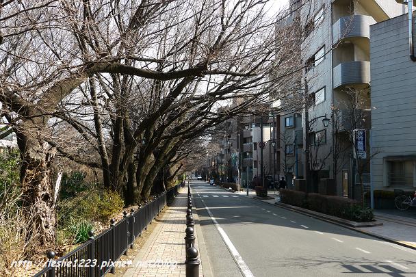 04P1220145_nEO_IMG.jpg