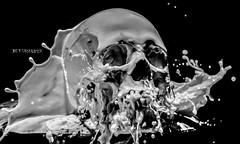 "Liquid Art "" Liquid Skull"" (eurisko) Tags: art milk human gown splash liquid eurisko"