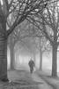 Fog in the Netherlands. (nicolevanas) Tags: alphenaandenrijn fog koude landschap landschape mist mistig nicolevanasfotografie stedelijklandschap winter