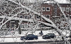 winter in town (peter.velthoen) Tags: snow street straat pijlsweerd utrecht winter koude houd cold vorst fietser neige froid gel motard rue cycliste pistecyclable route schnee kälte frost radfahrer radweg strase freeze cyclist bikepath road auto car pkw