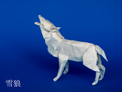 Snow Wolf (cavemanboon*) Tags: snow singapore origami wolf boon     cavemanboon lionelalbertinoshyena