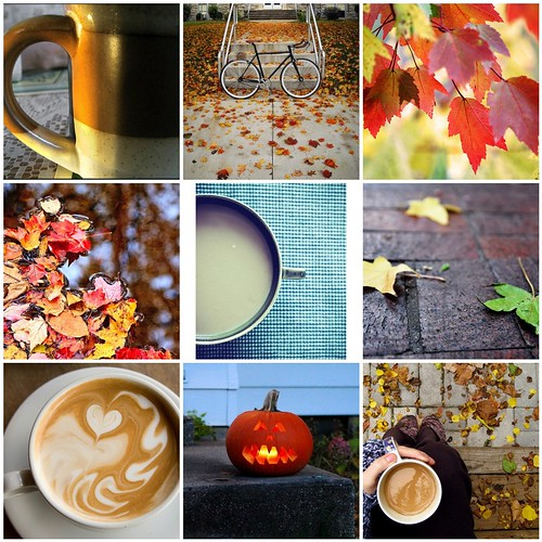 Fall Flickr Mosaic