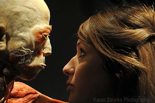 Bodies Revealed Exhibition Custard Factory Birmingham by Karen Strunks 17