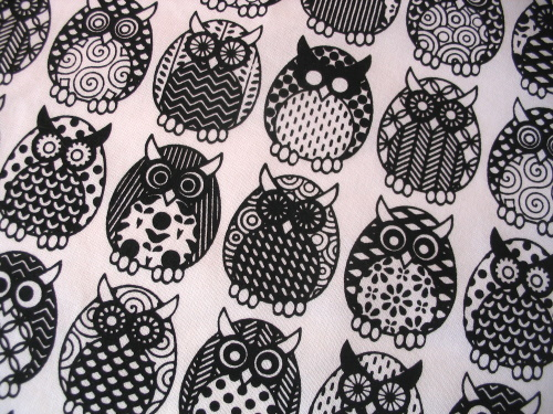 Owl Parliament in licorice black - close