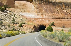 Tunnel on Rim Rock Drive - Colorado National Monument (kmanohar) Tags: travel landscape scenery colorado tunnel roadtrip journey roadtripusa nationalparkservice nationalmonument americanwest grandjunction fruita coloradoroadtrip americansouthwest coloradonationalmonument civilianconservationcorps coloradoplateau getaways thewest scenicdrive coloradoscenery westerncolorado westernusa aridregion curvedroad coloradoutahborder grandjunctioncolorado semidesert mesacounty rimrockdrive laramideorogeny highplateau tunnelrock uncompahgreplateau fruitacolorado americanroadtrip coloradophotography beautifulcolorado roadthroughtunnel westernamerica sceniccolorado mesacountycolorado drycolorado scenicroadtrip tunnelthroughmountain dryusa dryplateau americansouthwestroadtrip semiaridregion aridcolorado americanwestlandscape aridusa coloradonationalmonumentphotography tunnelthroughrock tunnelthroughhill