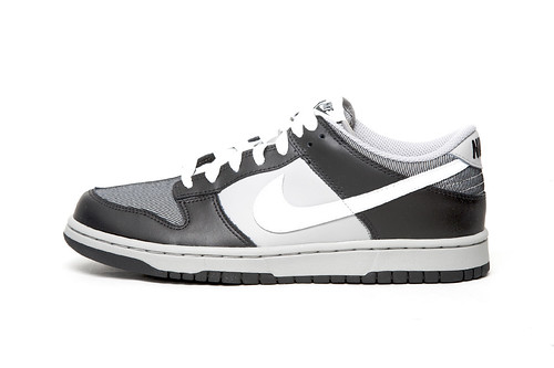 "Nike Dunk Low ""North Pack"""