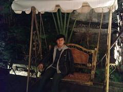 搖椅與小葉