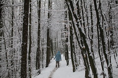 Snow in Kaiserslautern '09