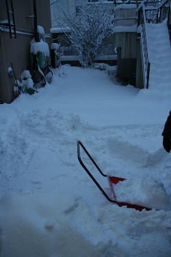 雪 (4).JPG