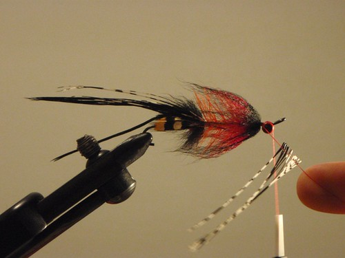 intruder fly tying