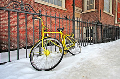 """Yellow Bike • <a style=""""font-size:0.8em;"""" href=""""http://www.flickr.com/photos/45090765@N05/4237821154/"""" target=""""_blank"""">View on Flickr</a>"""
