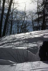 it was a fine winter (chiligirlll) Tags: winter snow northshore 1978 kodachrome nikkormat