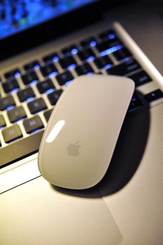 Magic Mouse (2)