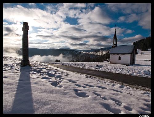 Vos plus belles photos du mois de janvier 2010 4315814093_5e8fc472e2