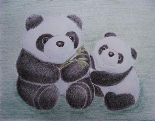 Panda Mom and Cub Stuffies - Color Pencil DrawingPanda Drawing In Pencil