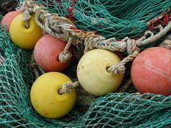 collier de perles ! (peu présente...ailleurs !) Tags: larochelle océan filets bouées portdepêche chefdebaie