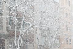 _DSC0427 (BloOwITt) Tags: barcelona white snow nevada bcn marzo neu 2010 elurra blizzardnevada marçnevada