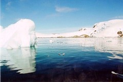 Glorious day in Antarctica (chris.bryant) Tags: ocean sea naturaleza snow mountains cold ice nature beautiful clouds reflections mar scenery peaceful antarctica bluesky cielo nubes coastline soe frio oceano beautifulscenery slopes tranquillo neive potofgold cieloazul blueribbonwinner reflectionsonwater bej worldbest platinumphoto flickraward diamondclassphotographer flickrdiamond theunforgettablepictures concordians platinumheartaward theperfectphotographer worldtrekker rubyphotographer oletusfotos platinumbestshot bestofmywinners waterreflectionsiceburgs snowcoveredmountainssky icebergreflections