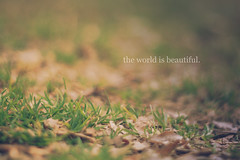 The world is beautiful. {explored!} (dimplyemily) Tags: