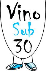Logo VS30 2010 200x310px