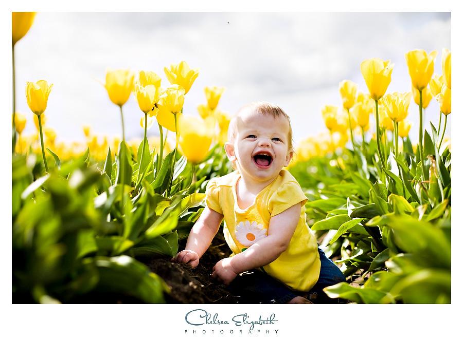 tulip_h_2