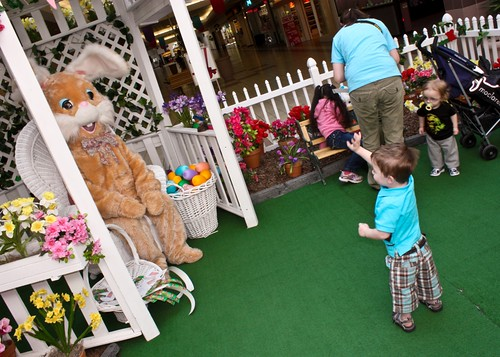 easter bunny 20101
