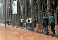 Nas grades do Jardim Botnico (Anglica Sousa) Tags: brazil storm rain brasil riodejaneiro rj chuva photojournalism jardimbotnico temporal fotojornalismo angiecarioca