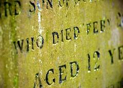 893.  Life is hard  sometimes (Di's Eyes) Tags: gravestone lifeishard macromondays mcobj