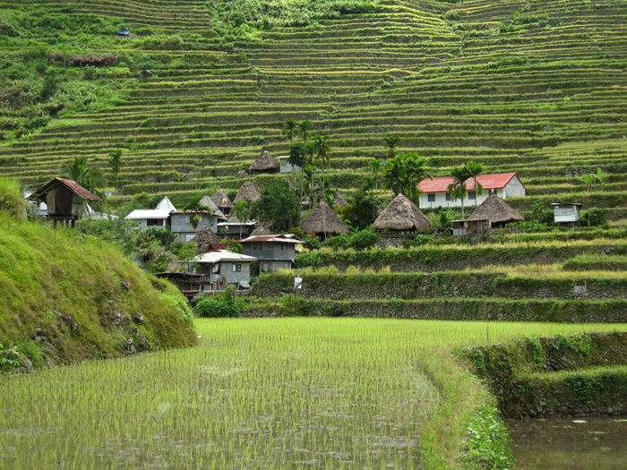 5812024429 122bc10a50 o Photo Essay: Batad Rice Terraces in the Philippines