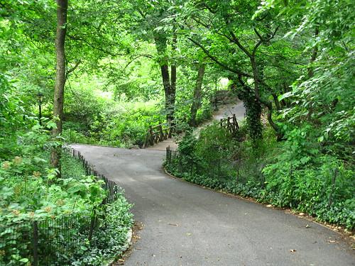 random Central Park