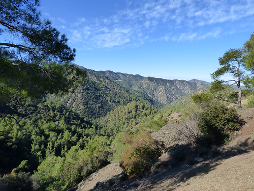 Troodos, en route to Kykkos Monastery (10)