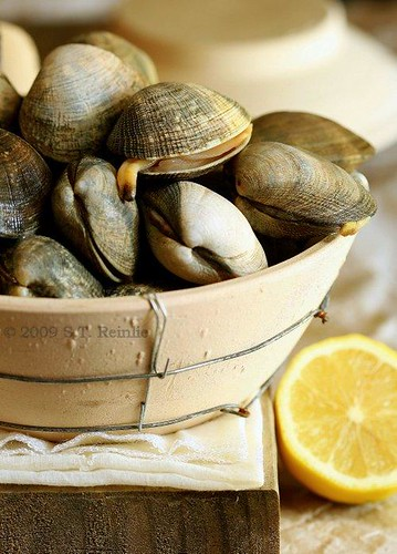 Raw Clams @ A perspicious mind: musing about food by S.T.Reinle