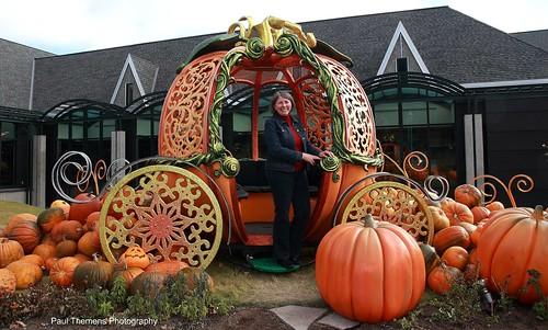 halloween decoration dhalloween