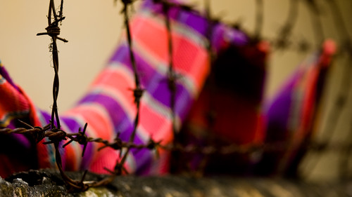 A pink and purple scarf imprisoned by barbed wire.