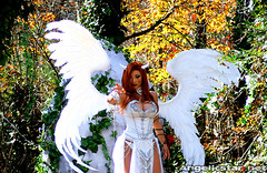 dawn15 (yayahan.com) Tags: red look rose angel joseph death dawn for michael costume lucifer heaven comic graphic cosplay head birth egg contest hell goddess halo chain novel cry yaya thorn han dragoncon alike linsner angelicstar