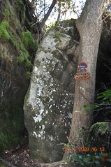 Dismals Canyon (King Kong 911) Tags: fish leaves birds nikon rocks bridges rocky climbing waterfalls steppingstones muddy dismalscanyon dismalites d5000