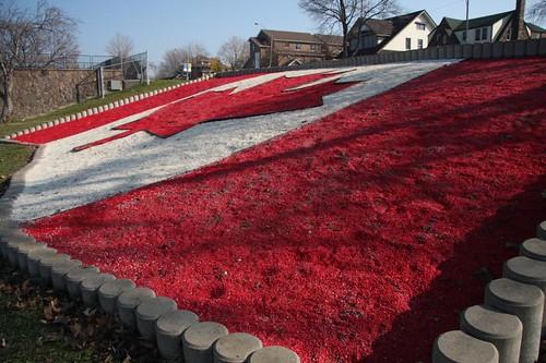Canada Flag Rock Garden