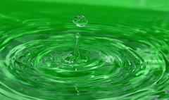 mi waterIZZO pure io :-) (ornygi ) Tags: verde green circles h2o acqua cerchi goccia tecniche prove