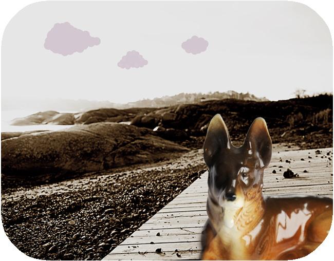 vovve på playan