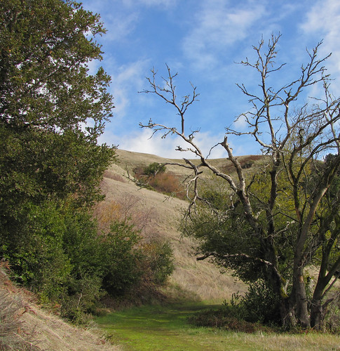 classic california trail