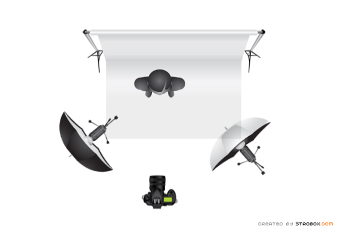 2010_0121_SAF-Setup2