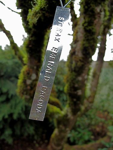 plant tag styrax