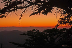 Shot in the dark (P. Oglesby) Tags: sunset mountains tree clingmansdome afterglow shotinthedark thehighlander godlovesyou coth greatsmokymountainsnp absolutelystunningscapes coth5 1001nightsmagiccity photocontesttnc11