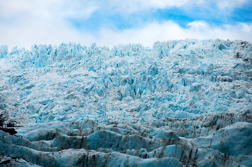 Glacier Franz Josef 35
