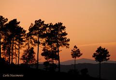 After a bad day (ciasralbael) Tags: contraluz landscape paisagem tonalidades