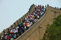 Beijing, formigues per un dia
