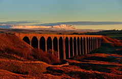 Ribblesdale gold (images@twiston) Tags: ribblehead viaduct ribbleheadviaduct blue sky snow fresh golden hour gold clouds cloud late afternoon sunshine settle carlisle settlecarlisle yorkshire northyorkshire midland railway main line 1875 battymoss battywifehole sebastopol belgravia jericho scheduledancientmonument 24 arch arches ribblesdale dales 3peaks yorkshire3peaks ploverhill penyghent national park yorkshiredalesnationalpark fields grass farm farmland moorland moor snowy winter white orange landscape imagestwiston twentyfour fells manmade stonework shadow shadows wideangle wide angle godsowncountry dry wall lane track path stone stonebuilt drystone