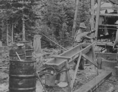 Keystone sampler tube being filled and swung over a trough, Lightning Creek, Stanley, British Columbia / Tuyau d'échantillons de roche calcaire en train d'être rempli et balancé au-dessus d'une auge, Lightning Creek, Stanley (Colombie-Britannique)