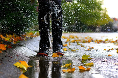 and from that second on... (Megan Caros) Tags: autumn storm fall leaves rain carson 50mm frozen droplets drops jump flood bokeh explore lightening neighbor puddles frontpage thunder downpour rainboots explored