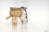 Sharing Secrets (Antty+) Tags: toys weird amazon singapore funny little odd hamster gogo danbo danboard danboru antty antontang